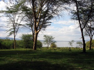 Fishermans Camp am Lake Naivasha