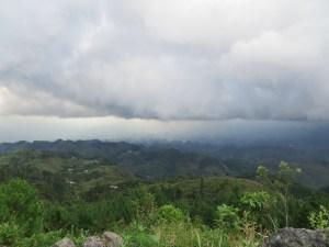 Blick auf den Dschungel