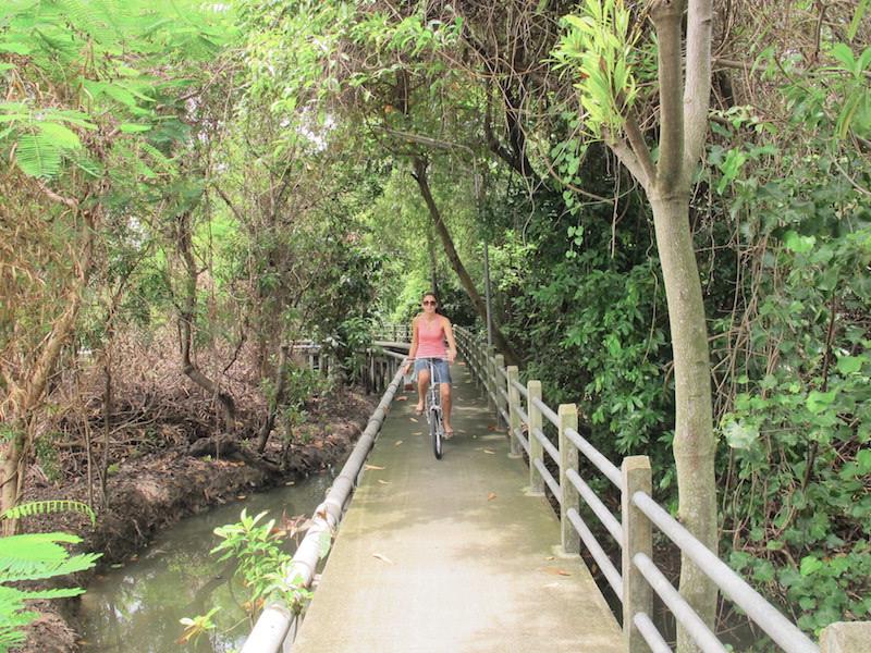 Bangkoks grønneste hemmelighet