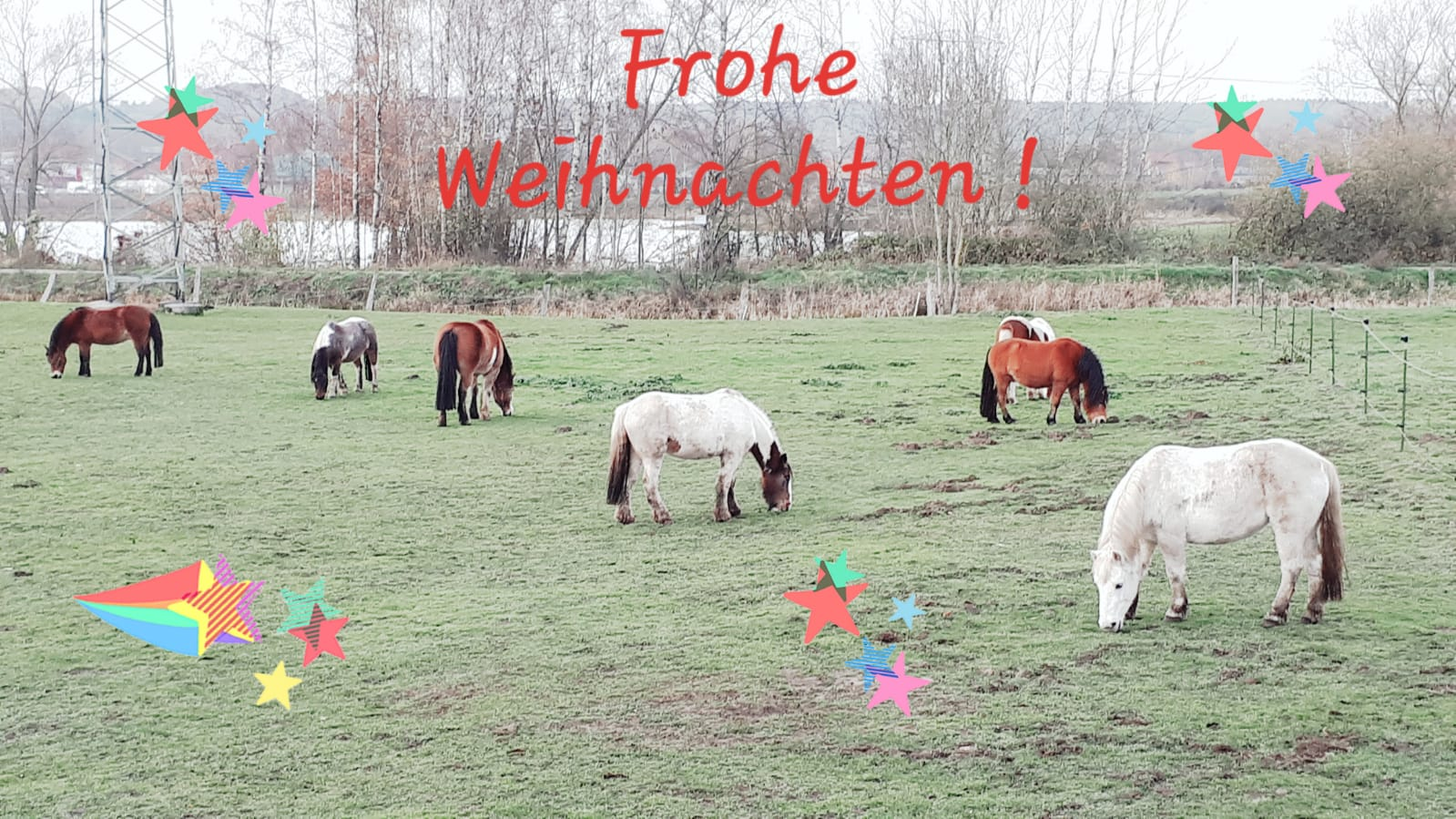 Frohe Weihnachten!