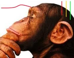 pensador lineas