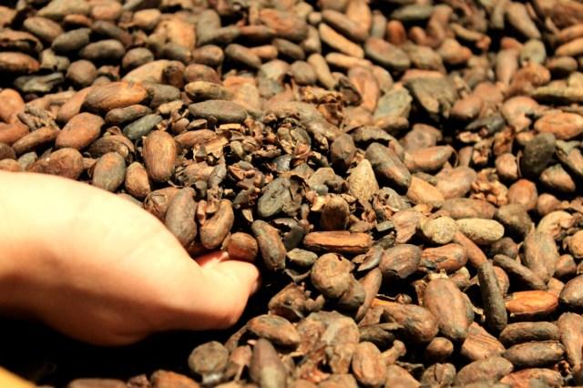 chocoladetrein van Zwitserland