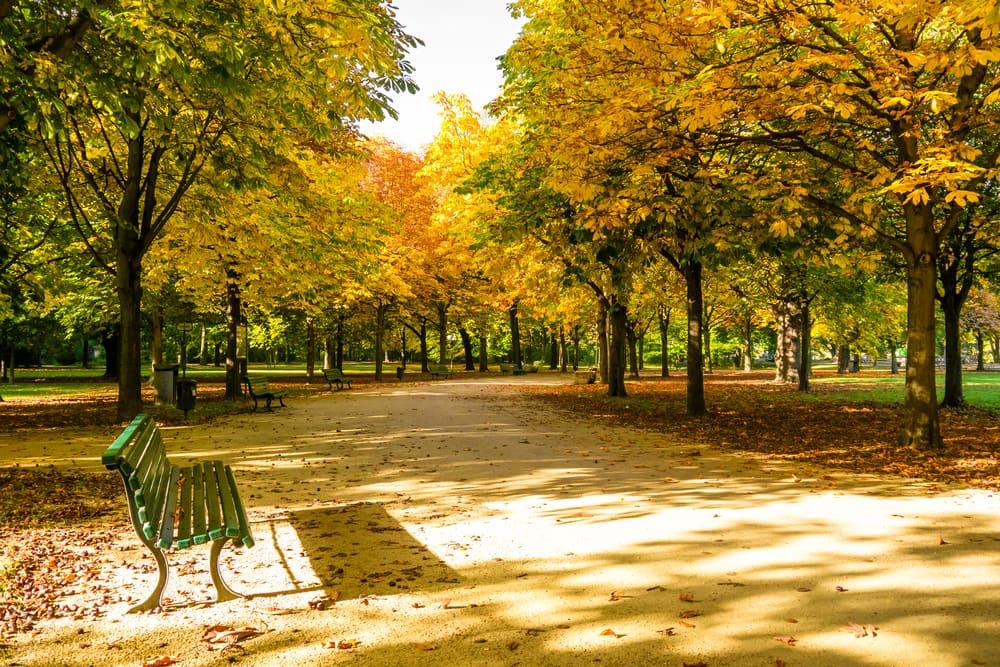 Tiergarden i Berlin