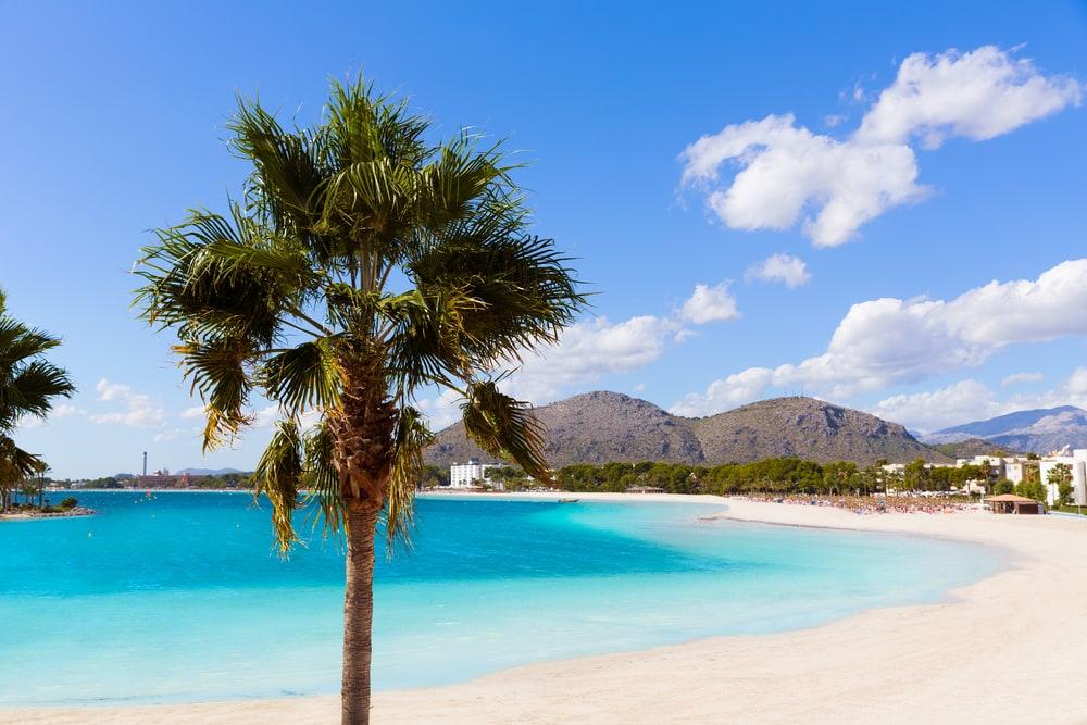 Platja de Alcudia - Mallorca i Spanien