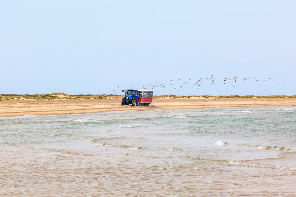 Traktor på stranden i Skagen