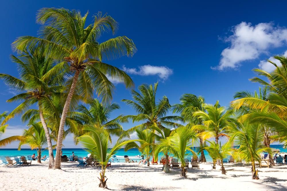 Saona Island - Den Dominikanske Republik