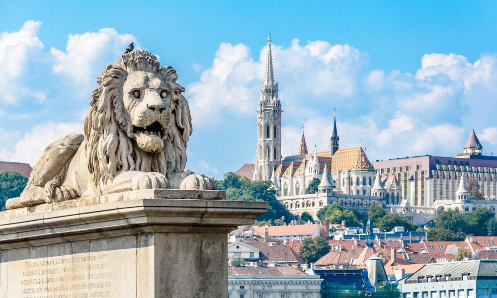 Løvestatue på Kædebroen - Budapest i Ungarn