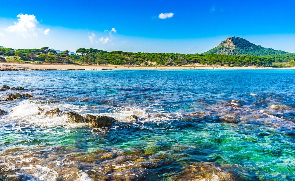 Cala Agulla stranden - Mallorca i Spanien