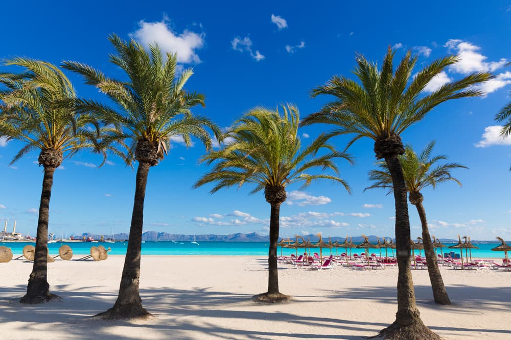 Platja de Alcudia - Alcudia på Mallorca
