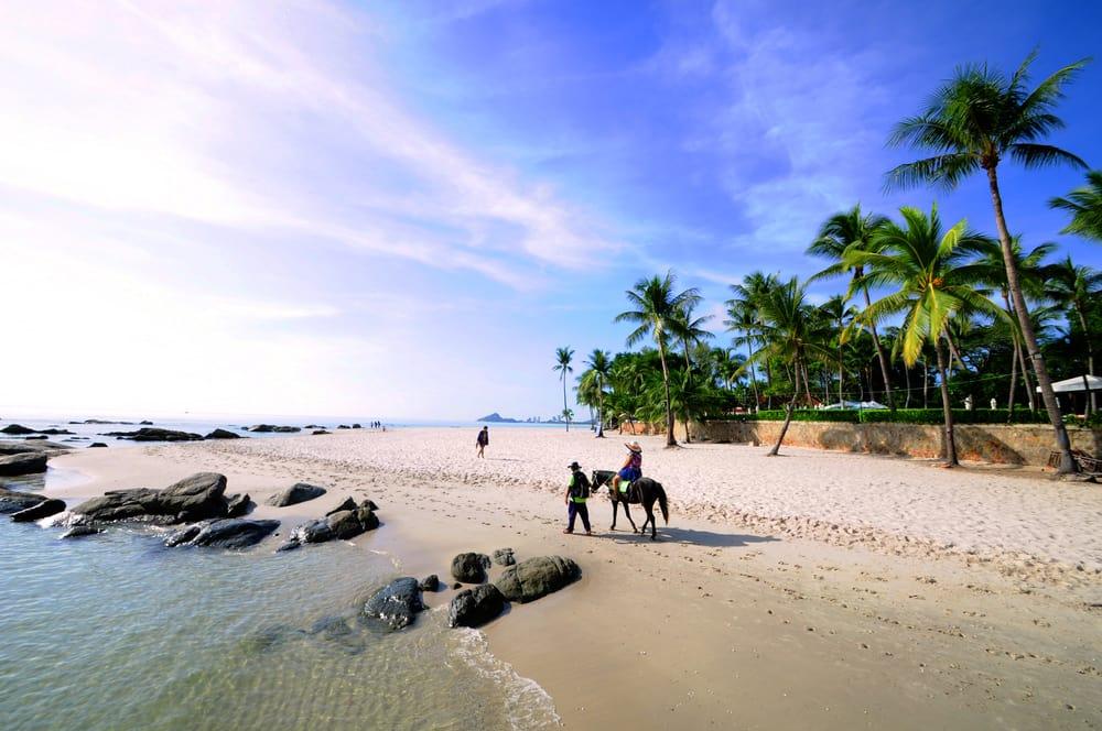 Hest på strand - Hua Hin i Thailand
