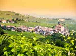 Barolo-vinregionen i Pietmont i Italien