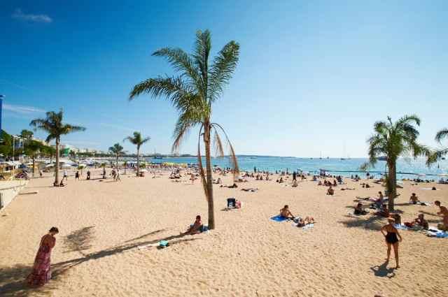 Strand med palmer i Barcelona og Middelhavet i baggrunden