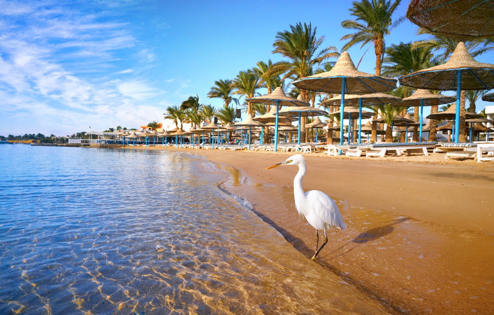 Hurghada i Egypten
