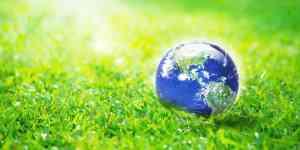 Rejs og miljø