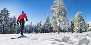 Langrend ski