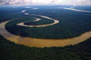 Brasilien - amazon floden - rejser