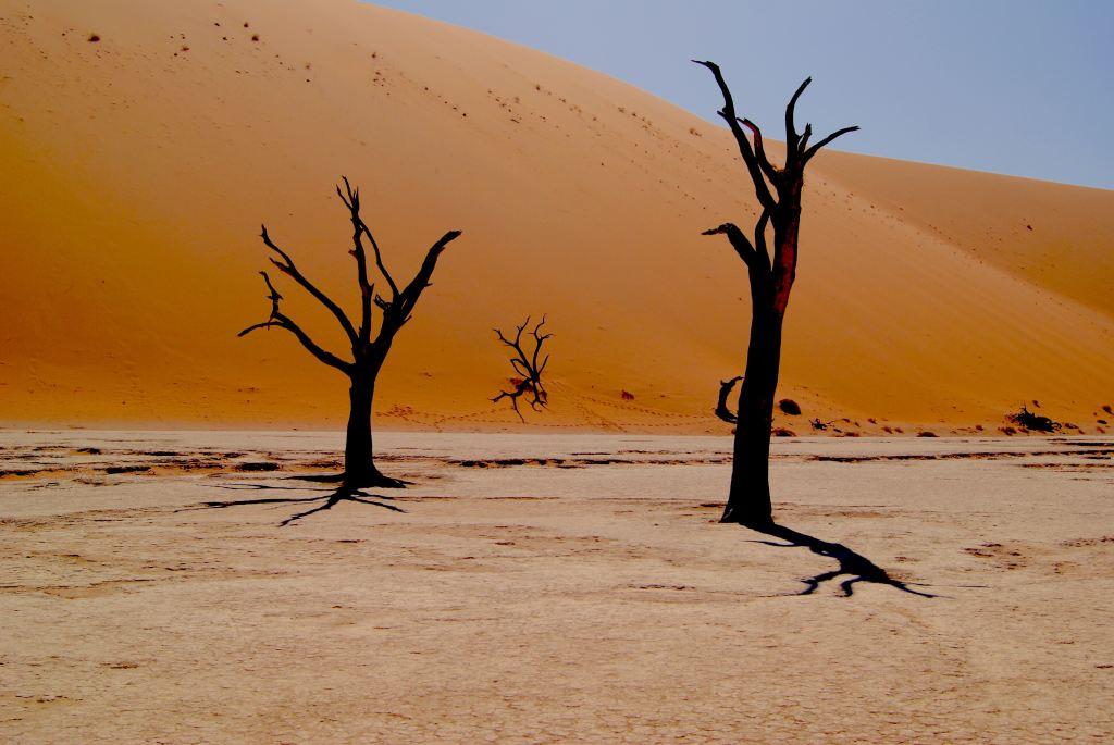 Namibia - Sossusvlei, ørken - bedste rejselande - rejser