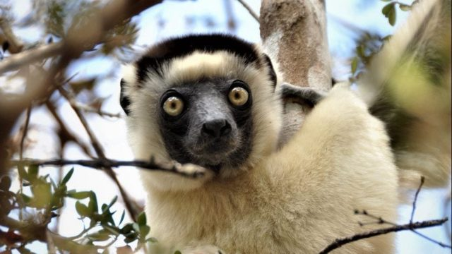 Madagascar - travel