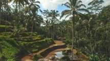 Bali - vulkan - natur - rejser