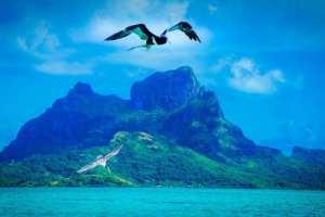 Fransk Polynesien - Bora Bora - rejser