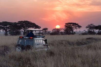 サファリ-セレンゲティ-タンザニア