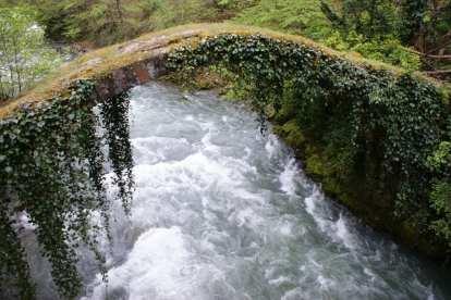 Georgia - priroda riječnog mosta - putovanja