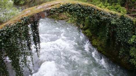 ג'ורג'יה - טבע מגשר הנהר - נסיעה