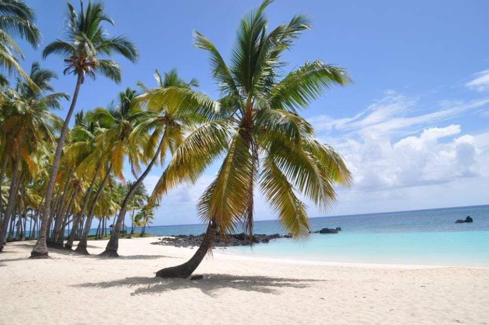 Comoros - beach nature islands - travel
