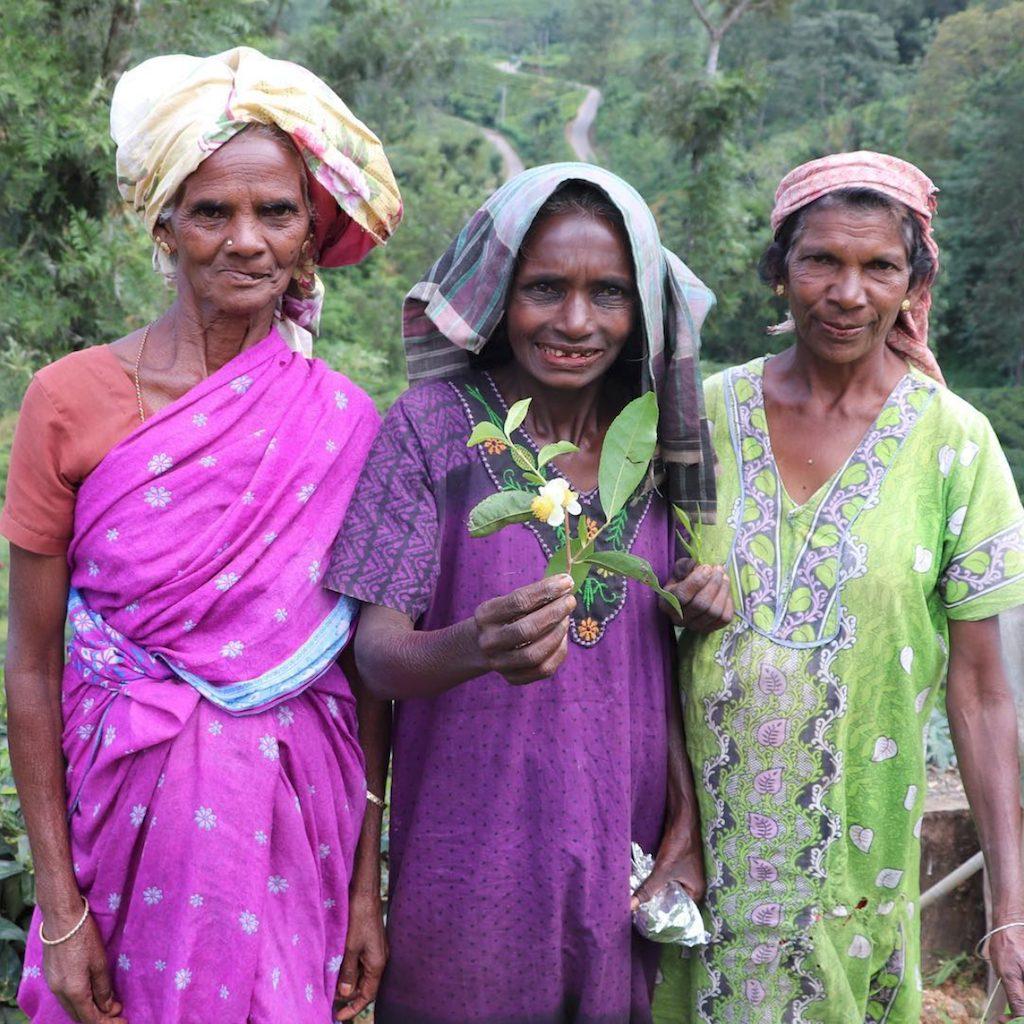 Sri Lanka - lokale mennesker natur - rejser