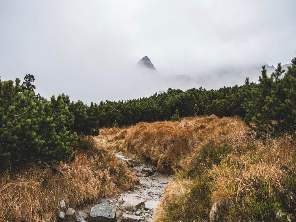 Slovaquie, montagnes Tatra, sentier de randonnée, voyage