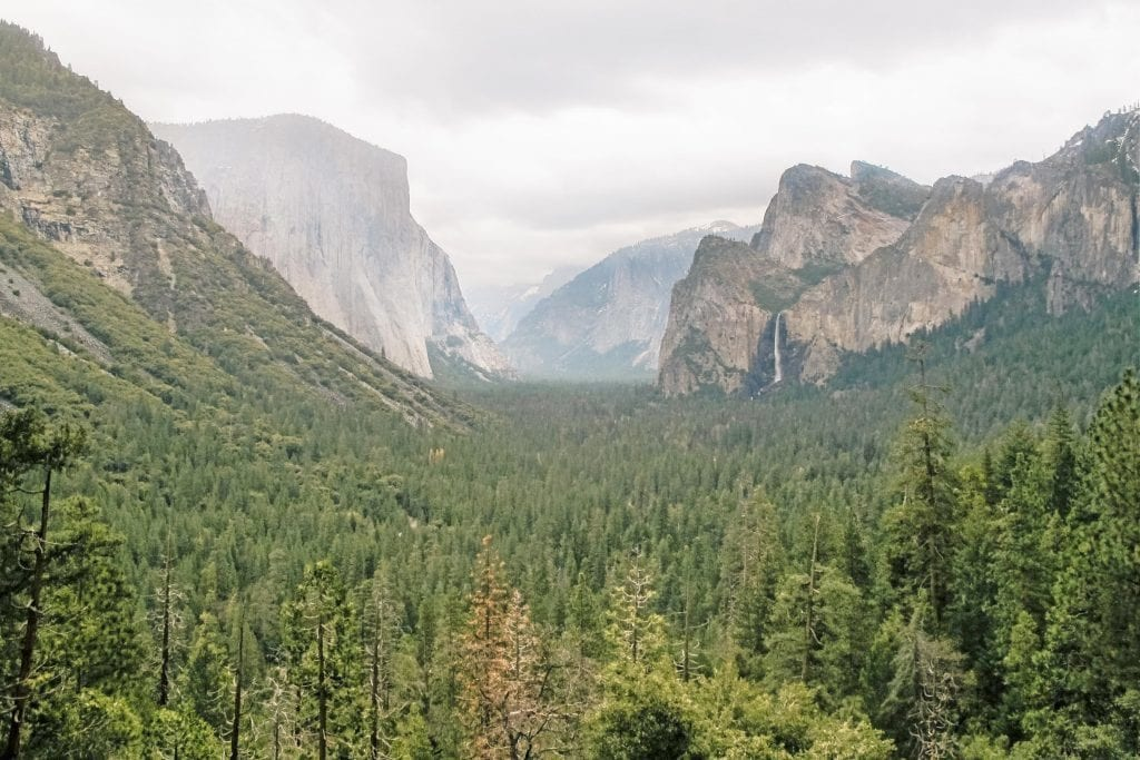 USA - nationalpark natur yosemite