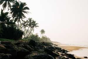 Strand - Sri Lanka - rejser