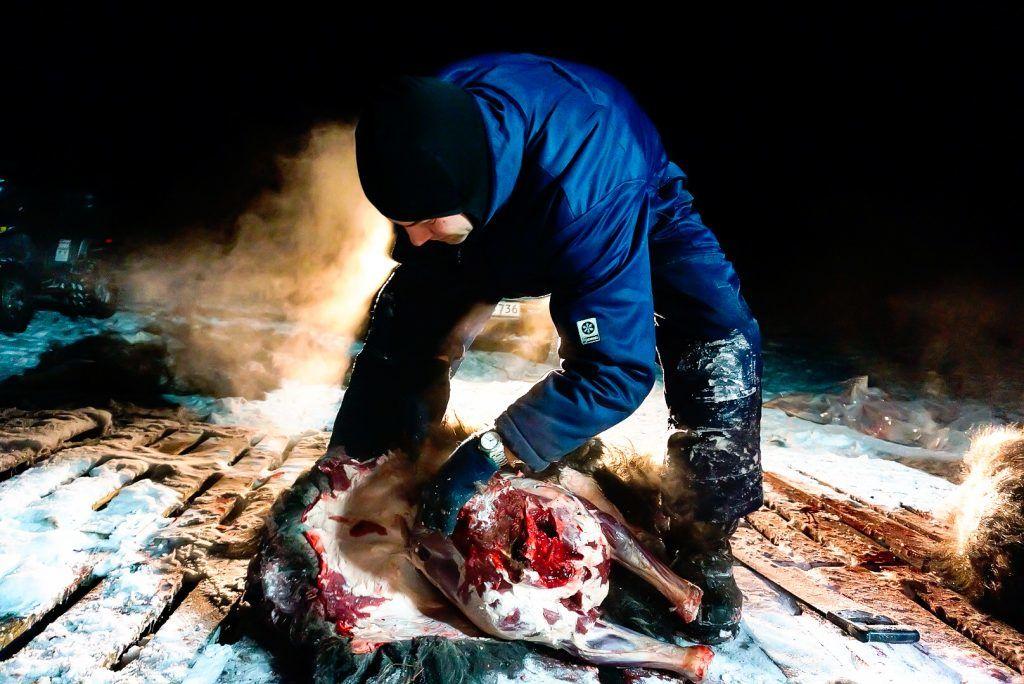 Jesper Frank - Kangerlussuaq - Greenland