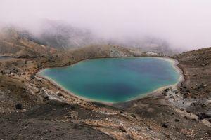 new zealand - natur - rejser