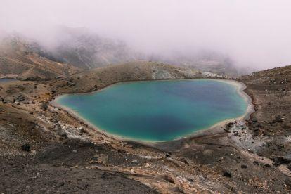 new zealand - nature - travel