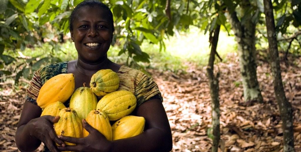Frau, Kakao - Reise - Westafrika