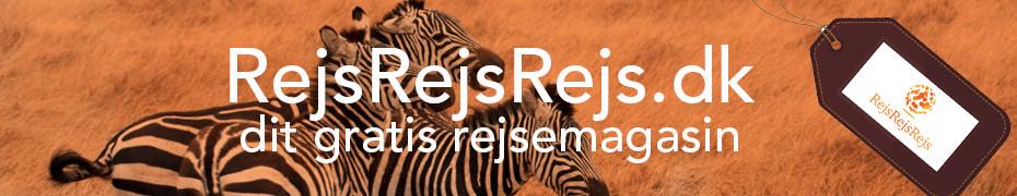 RejsRejsRejs Banner_Zebra_930x180