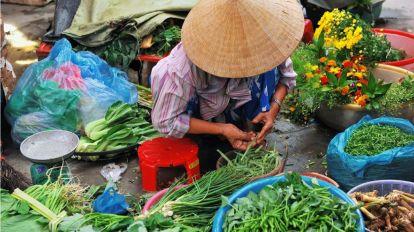 Vietnam - rejser