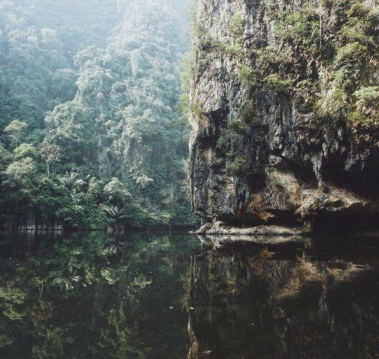 Malaysia, Jungle, Asya, paglalakbay