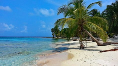 Panama San Blas Isla Diablo strand palme ø Rejser