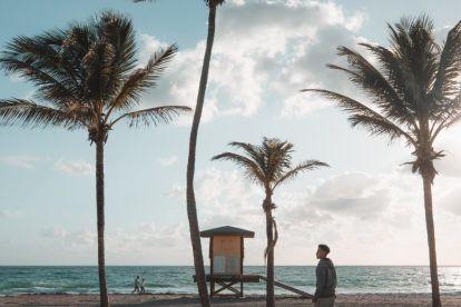 USA Fort Lauderdale Florida Strand Palme Skabeboard Rejser