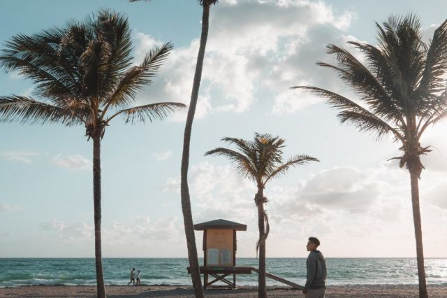United States Fort Lauderdale Florida Beach Palm Palm Boarding Travel