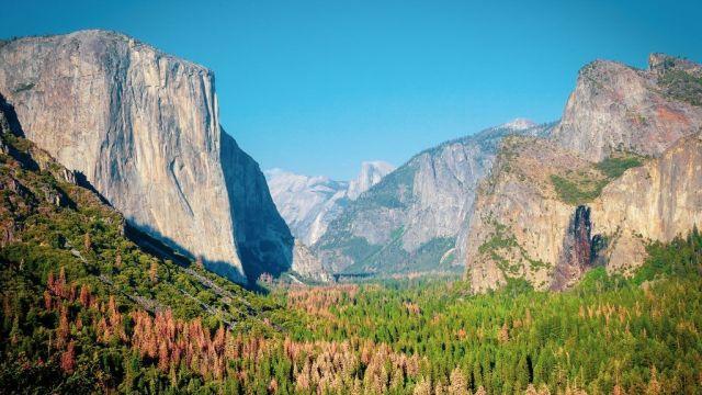 USA California Yosemite National Park Road trip Travel