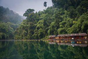 Thailand Khao Sok Nationalpark Flod Regnskov Rejser