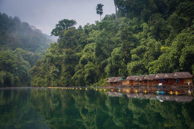 תאילנד טיולי יער הגשם נהר הפארק הלאומי קאו סוק