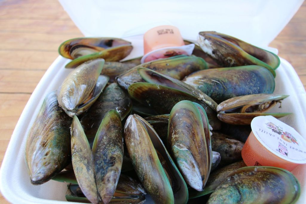 New Zealand Akaroa Green South Island Mussels Travel