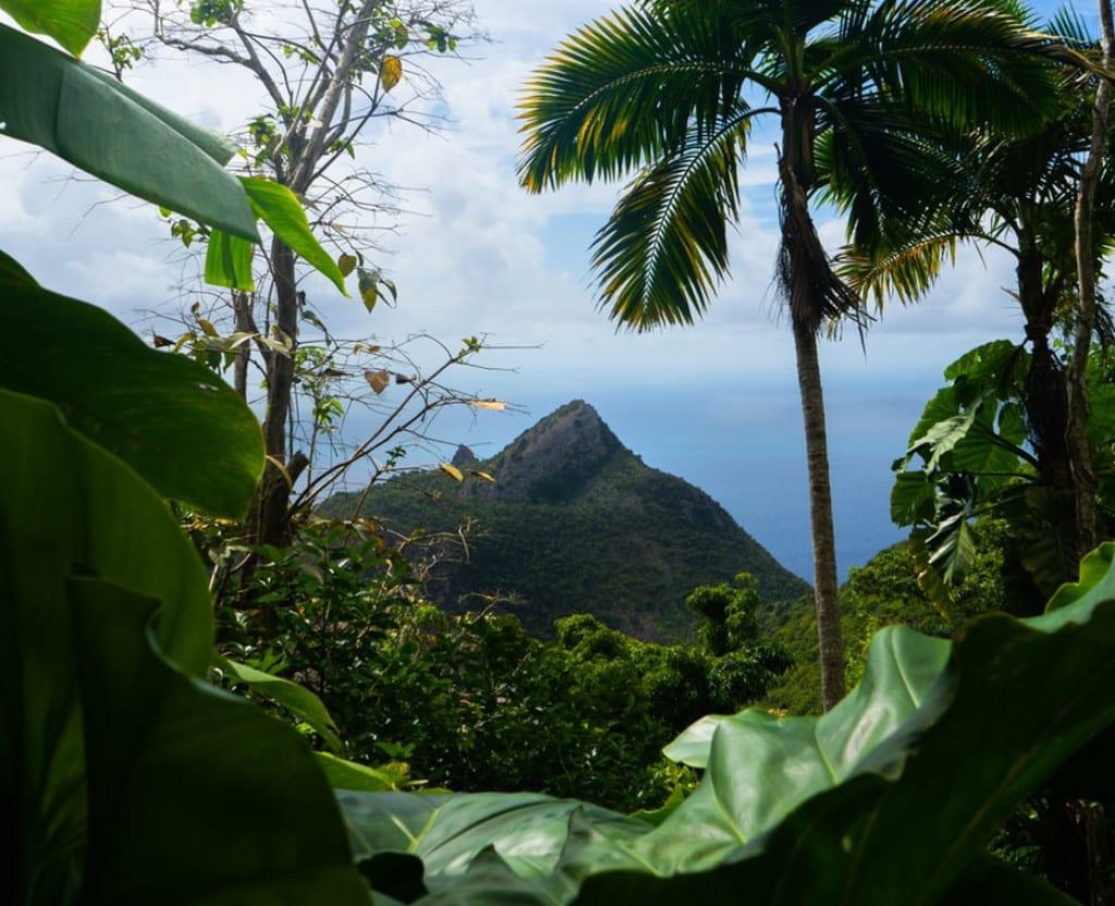 Caribien - Saba - udsigt - rejser