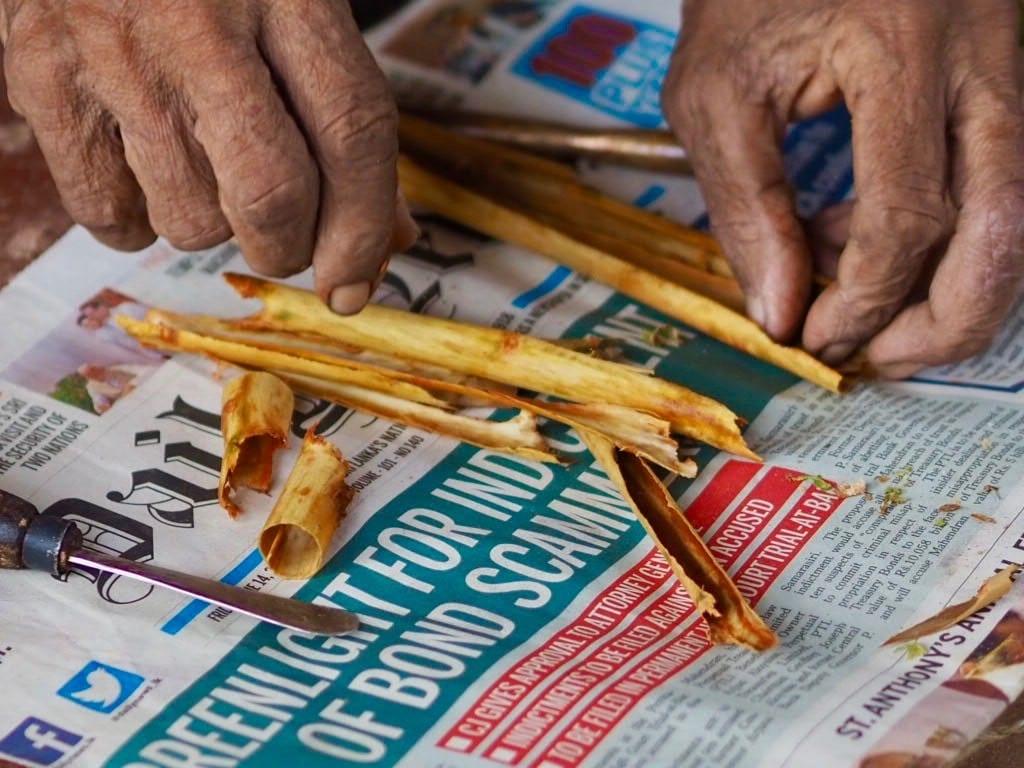 Sri Lanka - lake Koggala - Barberyn ayurvedic beach resort weligama - gammel mands fingre - kanel - rejser