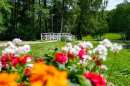 Holstebro, Danmark, Blomster, beskåret