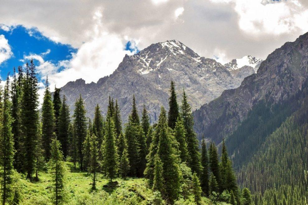 Kasakhstan - bjerge - Rejser